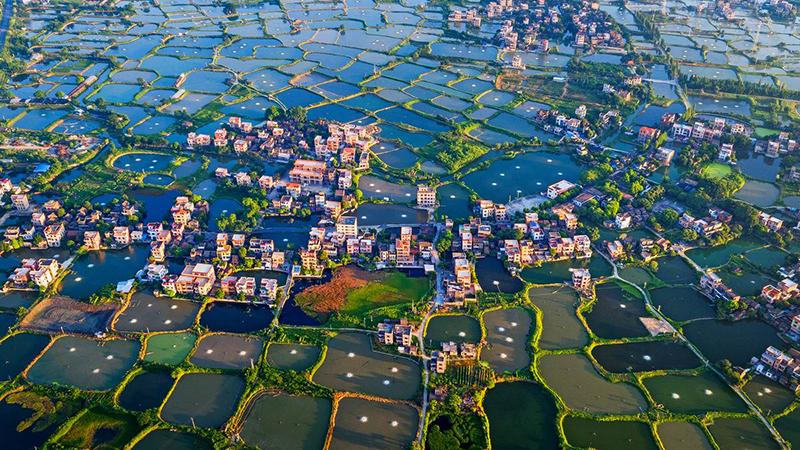 政策资金力挺 农村产业融合加快升级