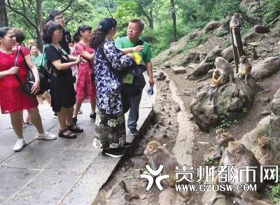 猕猴伤人游客两个月没等到医药费,公园方:报销有流程需时间