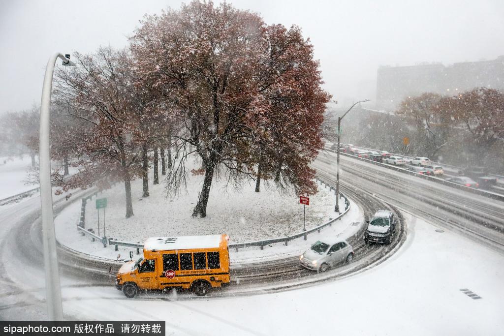 美国纽约迎来今冬第一场雪 道路积雪出行不便