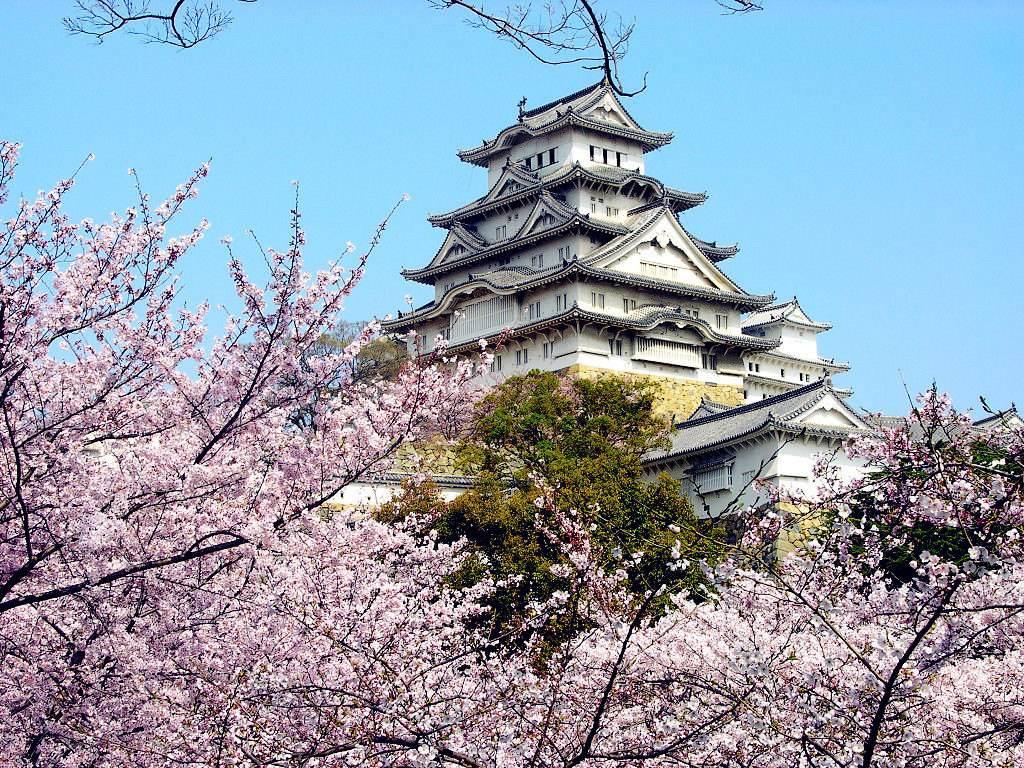 日本首次被评选为2018年全球最受瞩目旅行地