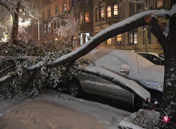 烦心事不断!加州大火未完纽约突降初雪 雪情超预期引发交通混乱