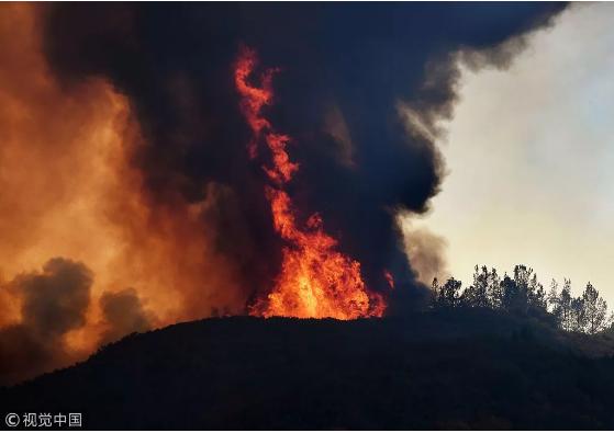 """加州:为什么""""火""""的总是我?"""