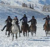 新疆那拉提冰雪旅游文化节开幕