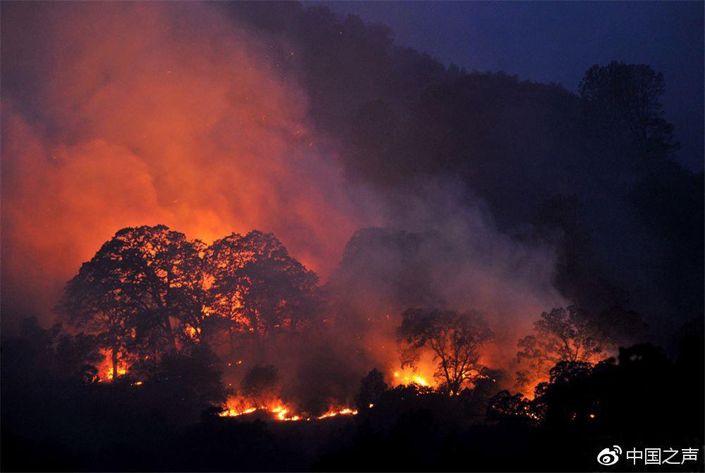 美国加州山火致74死超过1000人失踪,特朗普:这是个耻辱