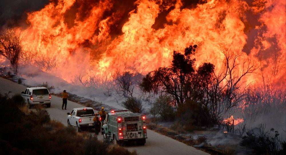 俄罗斯总理向美国加州大火遇难者家属表示哀悼