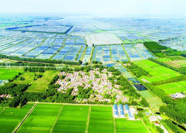 绿水青山就是金山银山 新华日报点赞泗洪美丽乡村建设