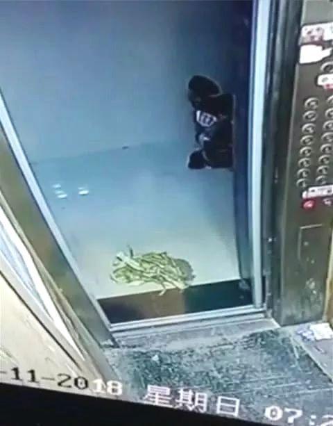 曲阳一老太太往电梯扔垃圾,引起众怒!