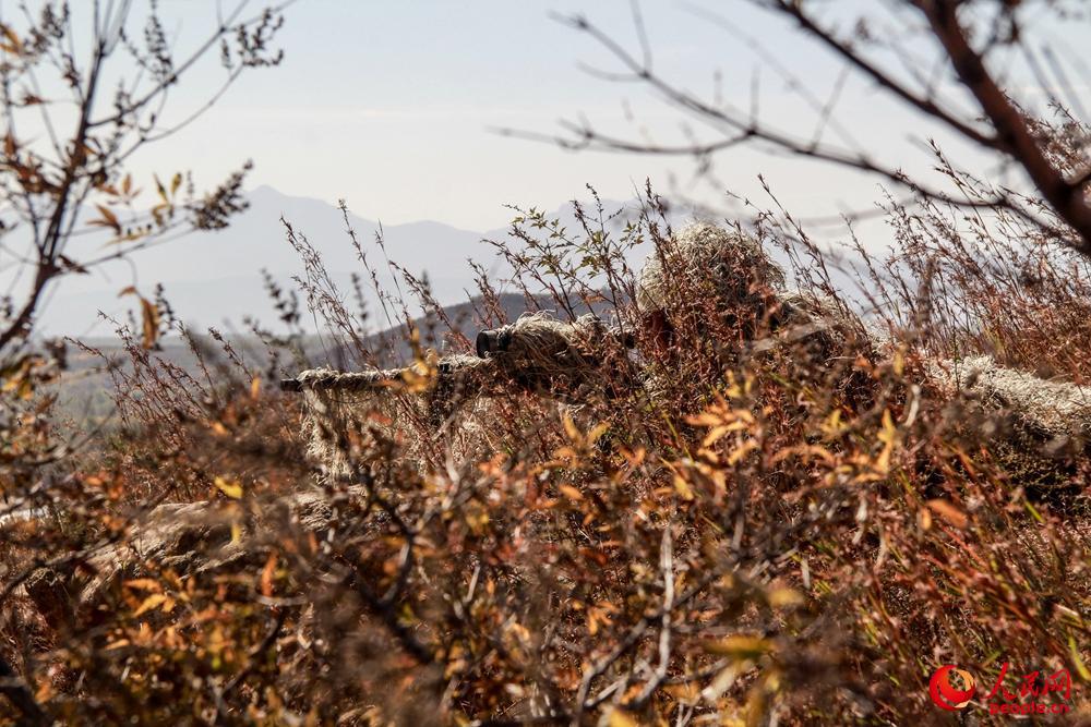 武警战士密林深处展开集训 锤炼狙击手必杀技能