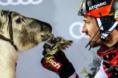 高山滑雪名将希尔斯赫夺生涯第59冠