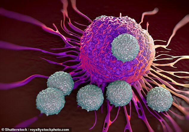 突破!牛津大学研发转基因病毒 可杀死癌细胞