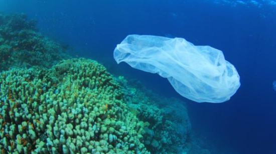 2050年海里塑料比鱼多!澳政府或对塑料制品征税