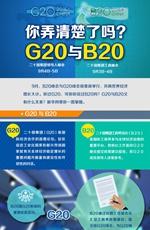 一图看懂G20与B20