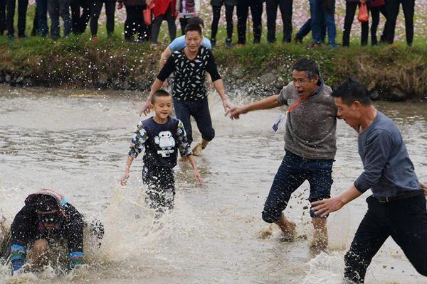广西罗城:侗寨抓鱼庆丰收