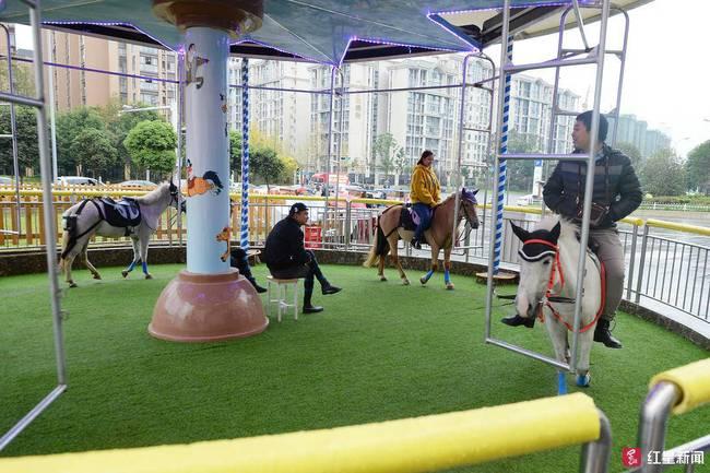 旋转真马暂停营业 马匹工作人员需要进行安全培训