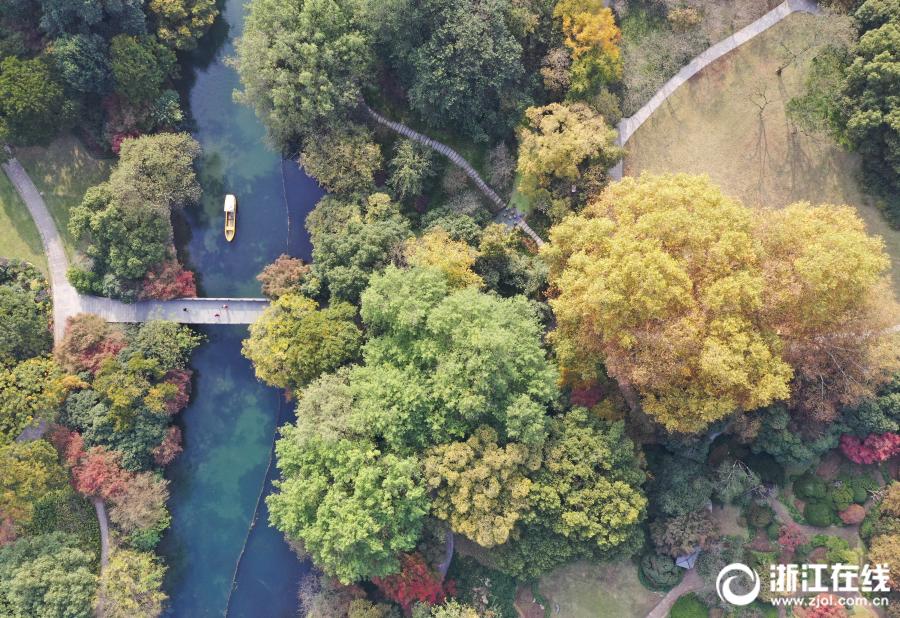 秋末冬初层林尽染 五彩西湖别有韵味