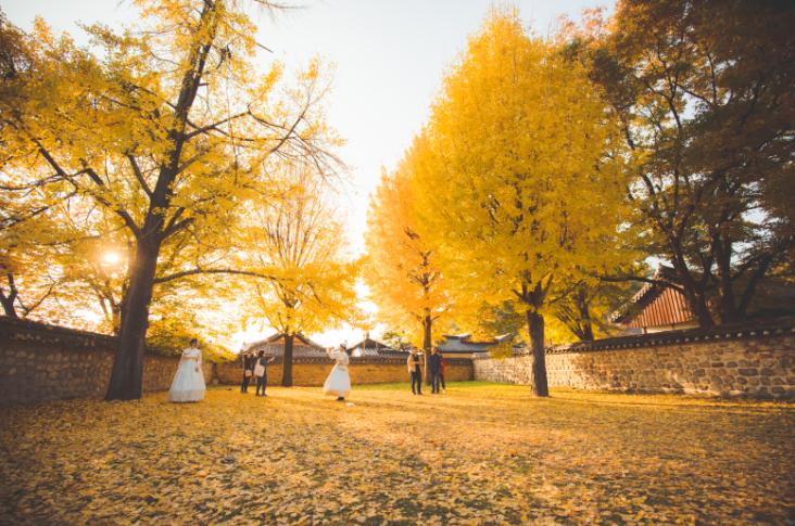 深秋时节,韩国最值得去的旅行胜地——全州市