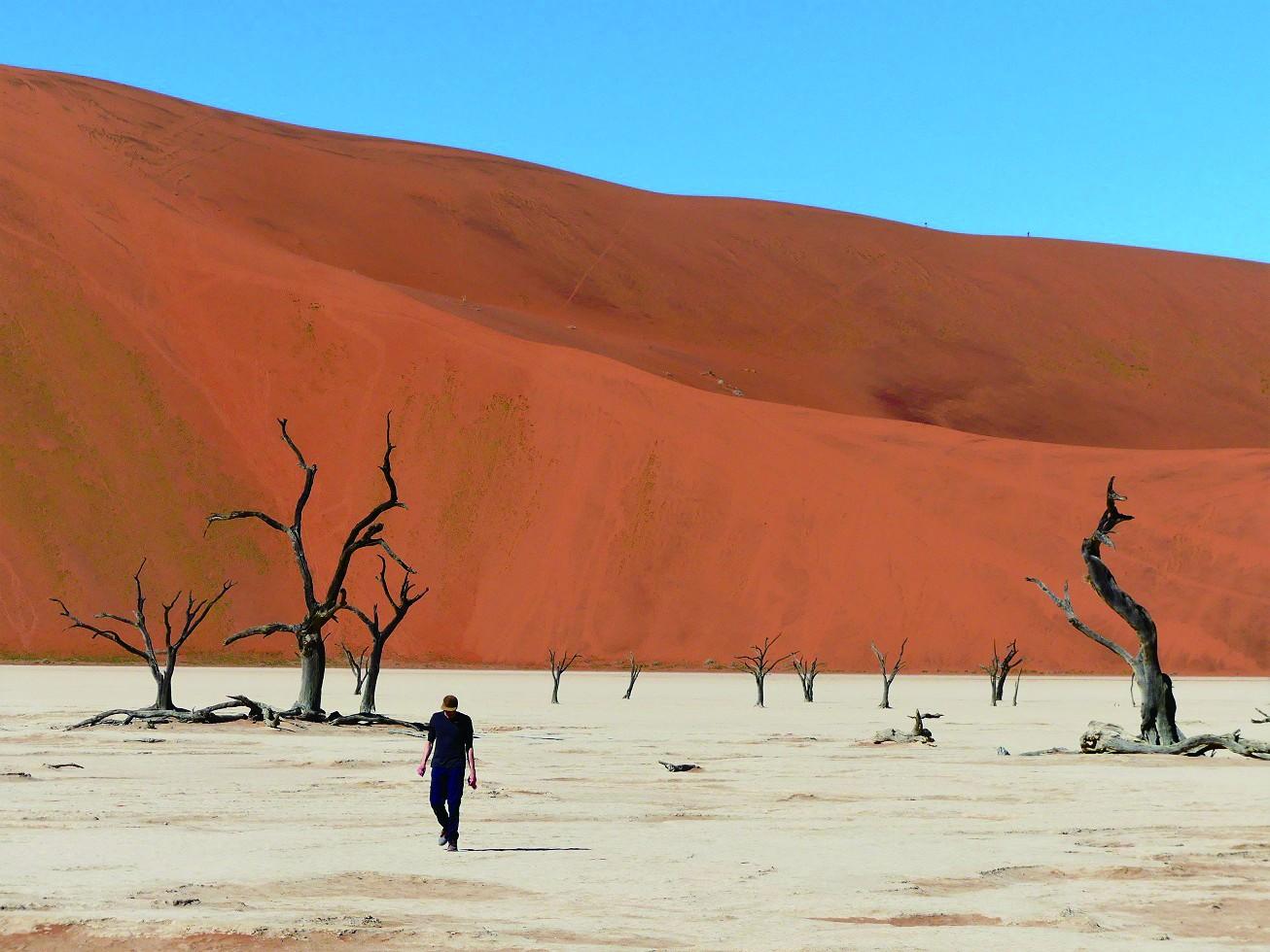 """纳米比亚死亡谷,分分钟拍出""""大片"""""""