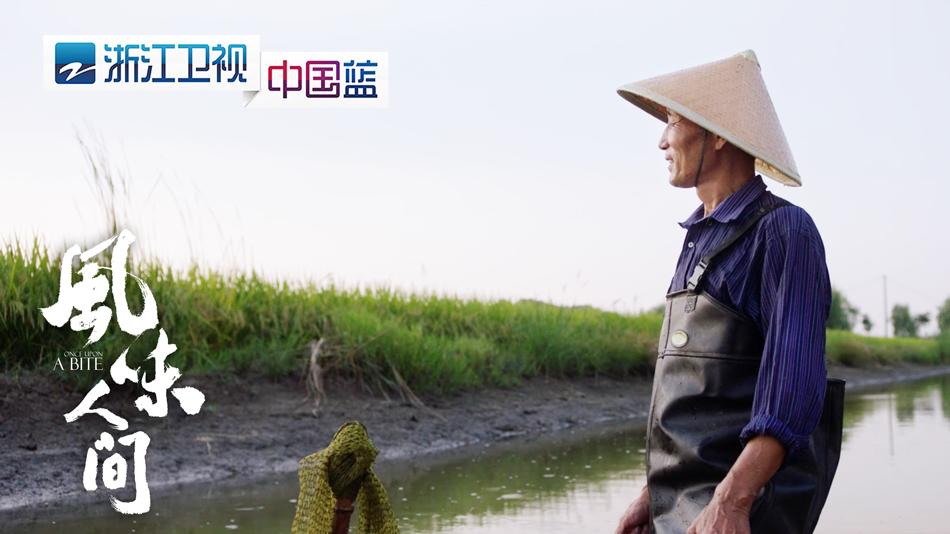 浙江卫视《风味人间》昨晚播出 小龙虾竟能吃出人生哲学