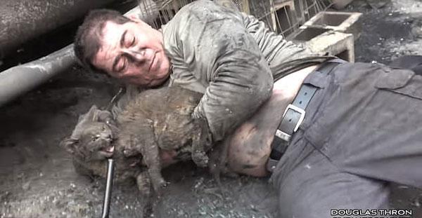 暖心一刻!美国男子救出山火中被困车底小猫