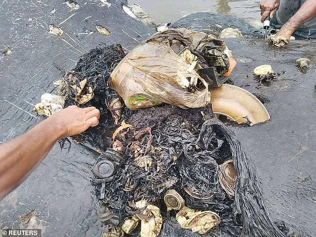 韩国渔民在鮟鱇鱼腹发现垃圾 引发海洋环境思考