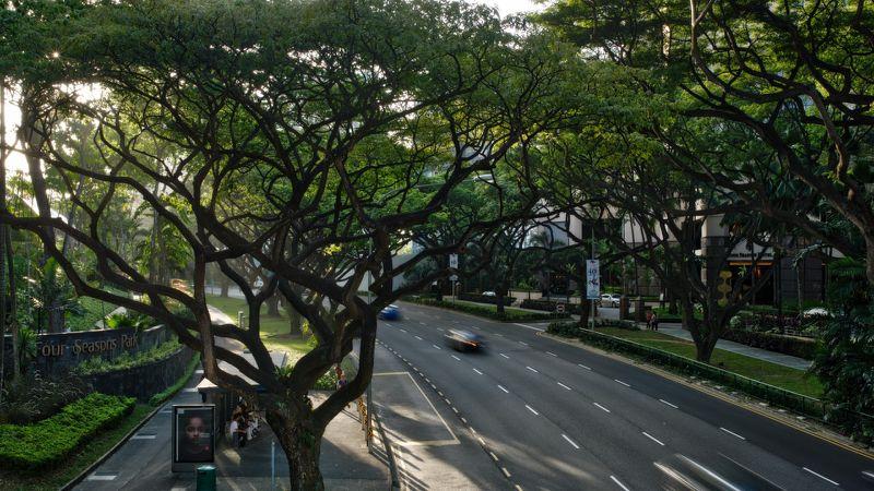 四维图新制作可支持自动驾驶高精度新加坡地图