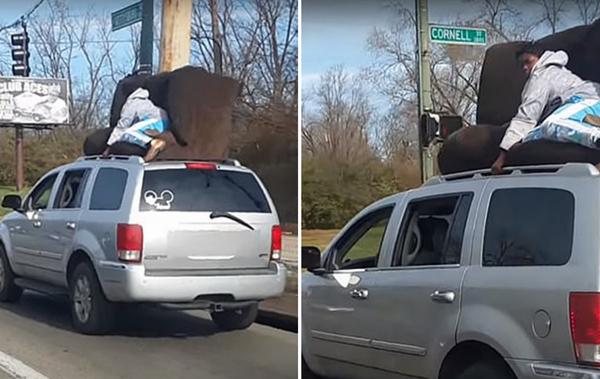 美一男子坐行驶中SUV车顶沙发上吓坏旁观司机