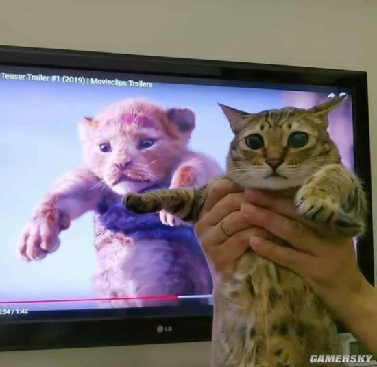 《狮子王》预告被网友恶搞 小辛巴变成小猫咪