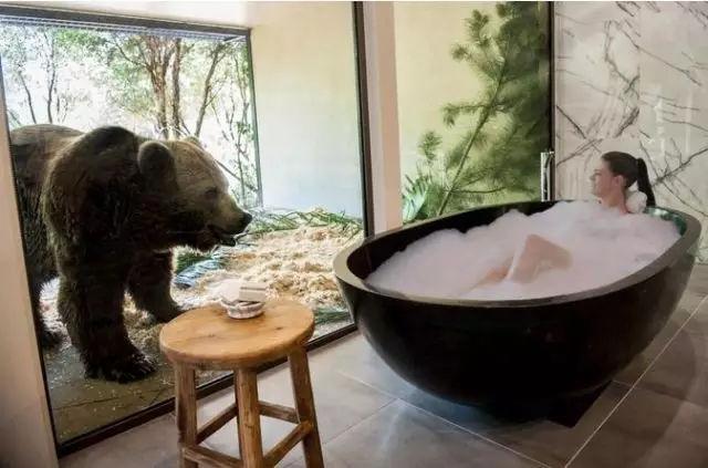 """与野兽同吃同睡,这家""""全球最兽性酒店"""