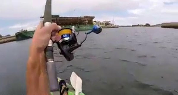 人钓鱼还是鱼钓人?澳渔夫被大鱼疯狂拖拽