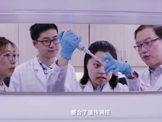 中国科学家揭示造血干细胞归巢全过程