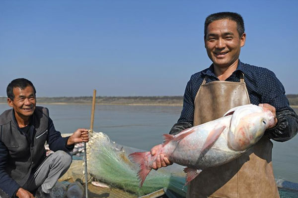 鄱阳湖:人欢鱼跃冬捕忙