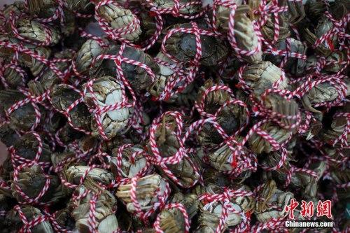 媒体:在国外想吃大闸蟹怎么办?忍着!