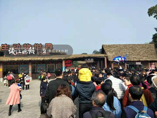 图:早晨10点众,游客们不息列队入园 顾师长挑供