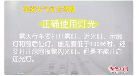 淄博公安交警提示浓雾天气安全驾驶常识
