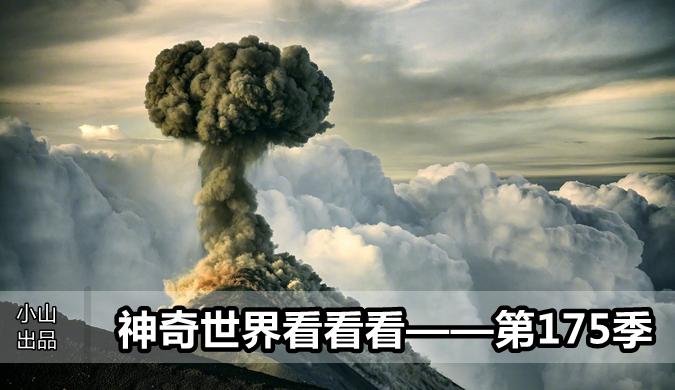 北京pk赛车139开奖
