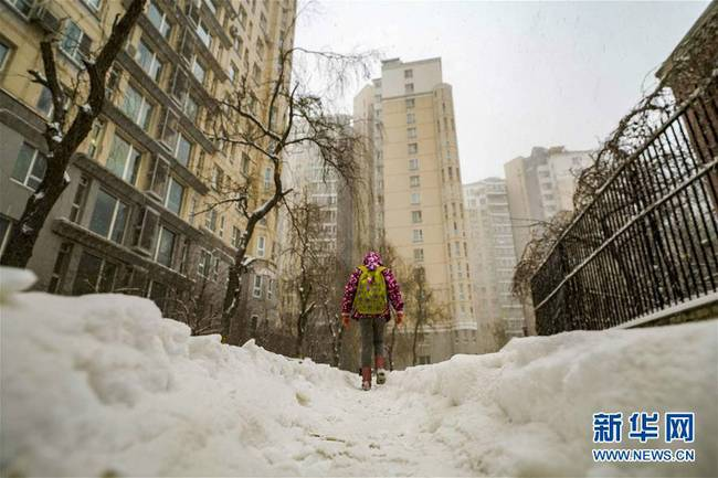 乌鲁木齐迎来降雪(组图)