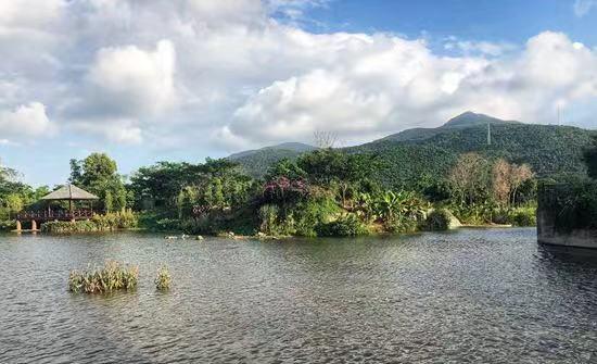 向内陆生长的小岛——三亚