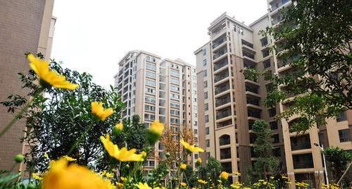 11月深圳上演推盘加速度 近1.5万套新房获预售许可证