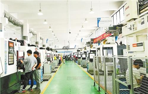 广东东莞提升营商环境:为企业撒一把种子开一片天地