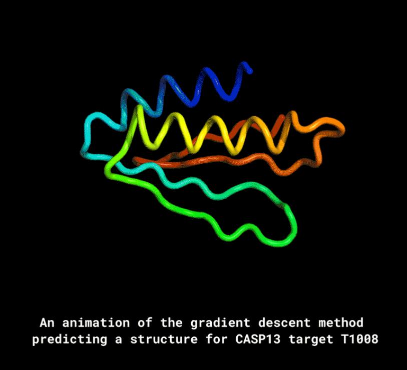 AlphaFold可仅根据基因预测生成蛋白质结构