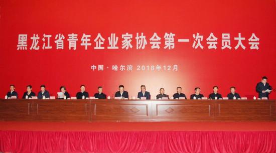 黑龙江省青年企业家协会建立 陈海波列席并发言