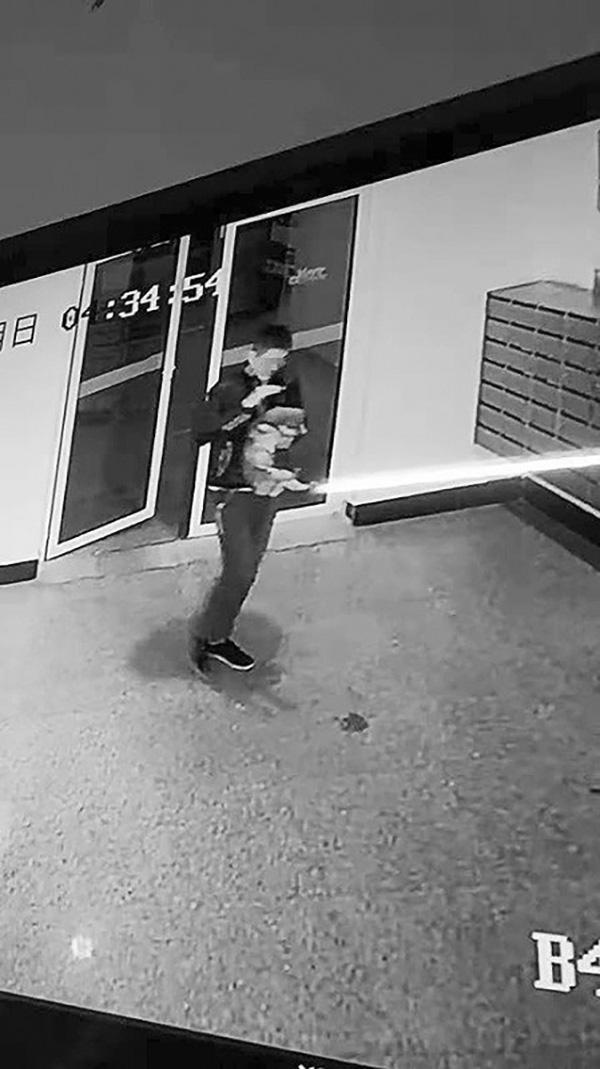 小狗凌晨被人抱上楼后坠亡 涉事租户:它自己跳窗