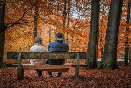 多地上调居民养老金个人缴费标准 委托投资资金归集启动