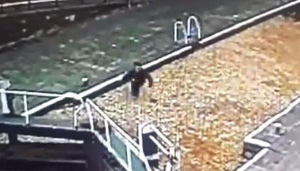 英男子专注玩手机误将运河当马路 落水后被救起