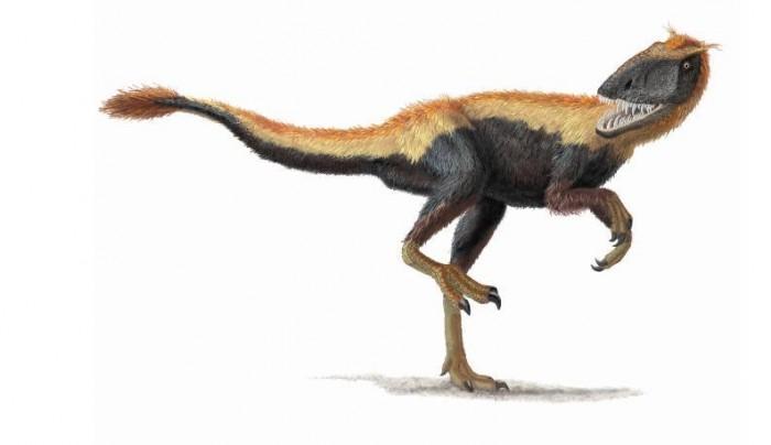霸王龙祖先是捕猎高手 竟是因为它有S形大脑