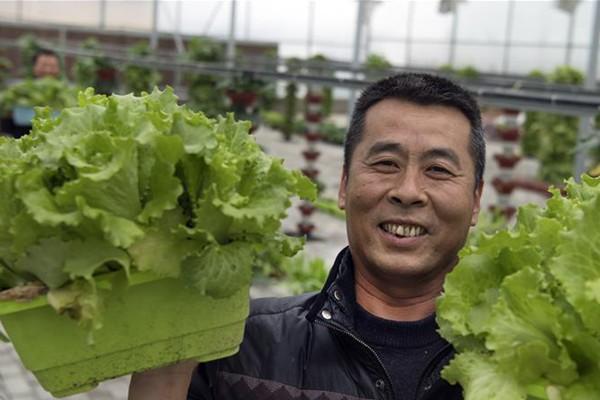 陕西华州:发展特色农业促增收