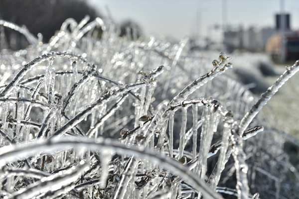 冻哭!天津拉响今冬首个寒潮预警 全城进入冰冻模式