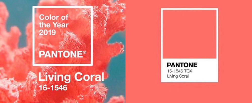 2019 Pantone年度色公布:暖和珊瑚粉!