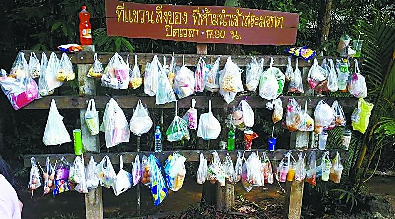 塑料袋让泰国人又爱又恨