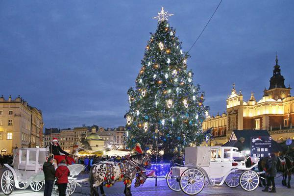 圣诞节将至 波兰克拉科夫街头灯火通明流光四溢